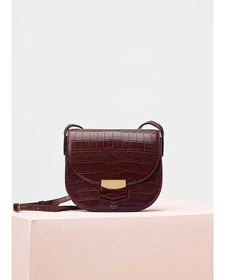 Celine-bags-fall-winter-2016-2017-for-women-29