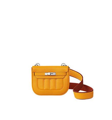 Hermes Bags Fall Winter 2016 2017 For Women Look 19