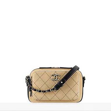 Chanel Bags Fall Winter 2016 2017 For Women Look 12