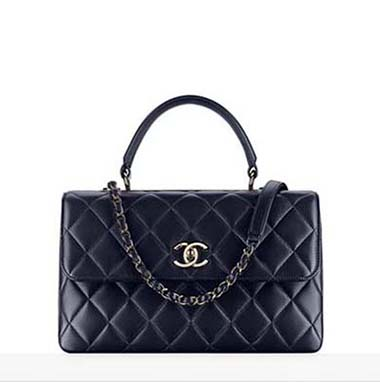 Chanel Bags Fall Winter 2016 2017 For Women Look 24