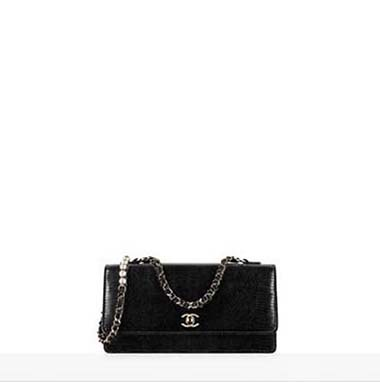 Chanel Bags Fall Winter 2016 2017 For Women Look 26