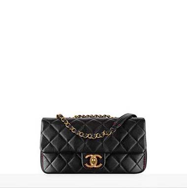 Chanel Bags Fall Winter 2016 2017 For Women Look 37