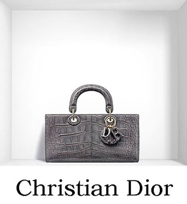 Christian Dior Bags Fall Winter 2016 2017 For Women 10