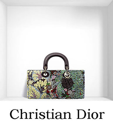 Christian Dior Bags Fall Winter 2016 2017 For Women 16