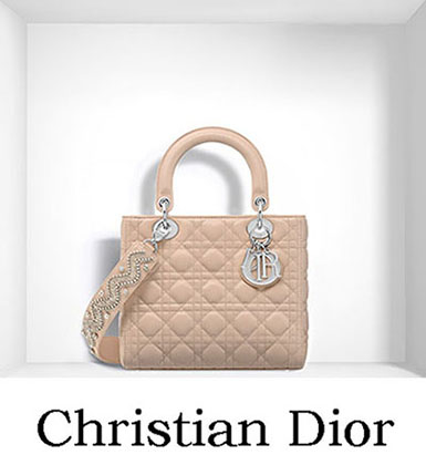 Christian Dior Bags Fall Winter 2016 2017 For Women 18