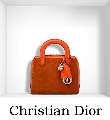 Christian Dior Bags Fall Winter 2016 2017 For Women 22