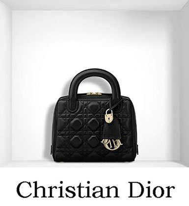 Christian Dior Bags Fall Winter 2016 2017 For Women 25