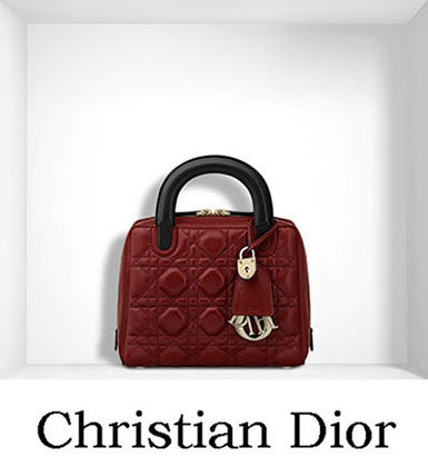 Christian Dior Bags Fall Winter 2016 2017 For Women 26