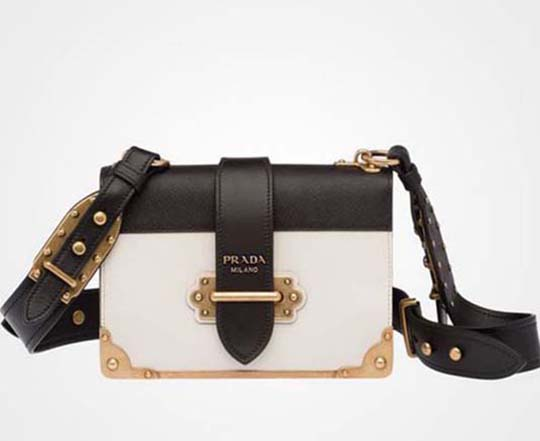Prada Bags Fall Winter 2016 2017 Handbags For Women 8
